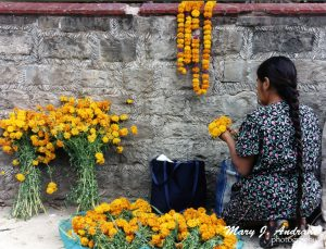 Selling cempasuchitl flowers.